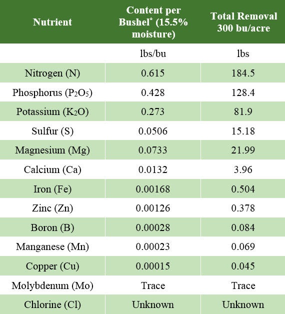 Table listing nutrient content / bu corn grain and total amounts of nutrients removed from the field at 300 bu/a grain yield.