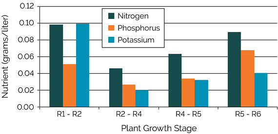 Chart showing estimated amounts of nutrient flux to support a corn grain yield of 300 bu/acre, stages R1 - R6.