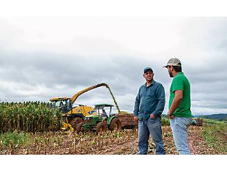 Dois homens conversando e ao fundo sendo colhido milho para silagem.