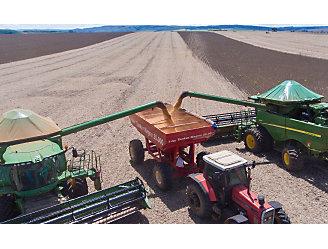 Duas colheitadeiras largando semente de soja no caminhão.
