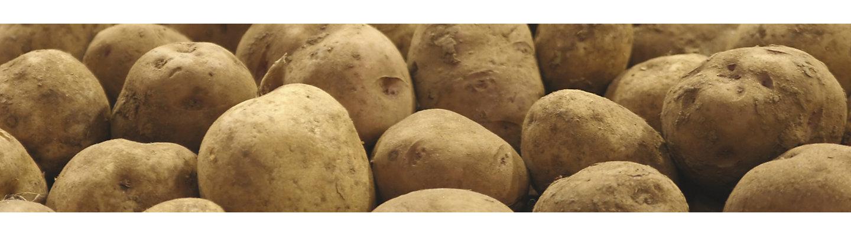 Potato_Banner_Mobile