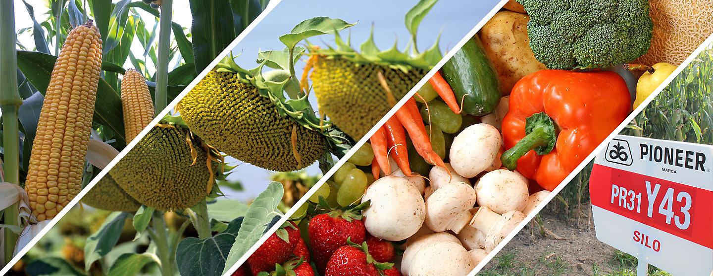 Protección de cultivos y semillas
