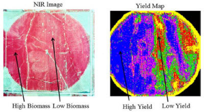 Near infrared (NIR) aerial image and yield map.