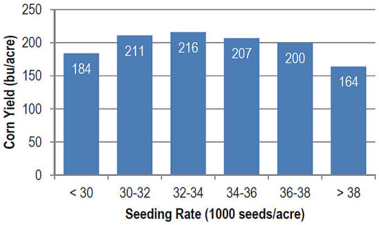 Seeding rate data output for an individualhybrid from a farmer network service.