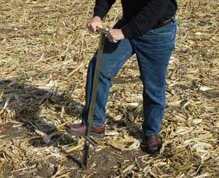 Soil sampling after corn harvest.