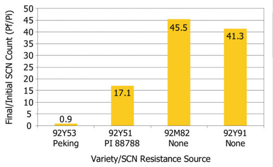 In the first year of a 2011-2013 Pioneer/University of Michigan study, SCN reproduction differed among varieties as indicated by Pf/Pi ratio (Pf = final SCN count and Pi = initial SCN count).