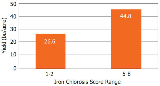 Average yield of soybean varieties susceptible (IDC score 1-2) and tolerant (IDC score 5-8) to iron deficiency chlorosis in a 2-year Pioneer study.