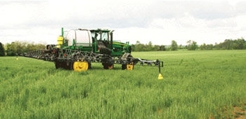 Terminating cover crops at an early growth stage.
