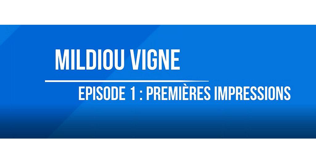 Zorvec Maguelone Episode 1